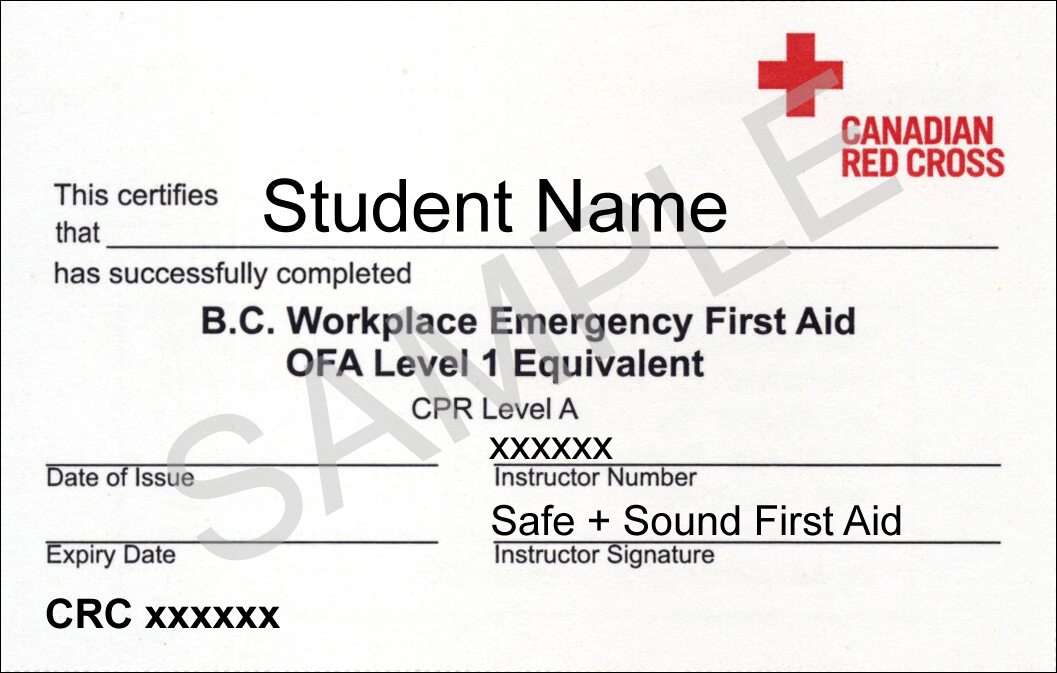 Workplace emergency first aid coquitlam first aid workplace emergency first aid course outline certificate yadclub Choice Image